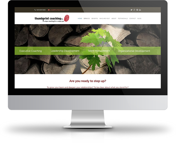 Small business website design company located in Moraga CA., East Bay of San Francisco.